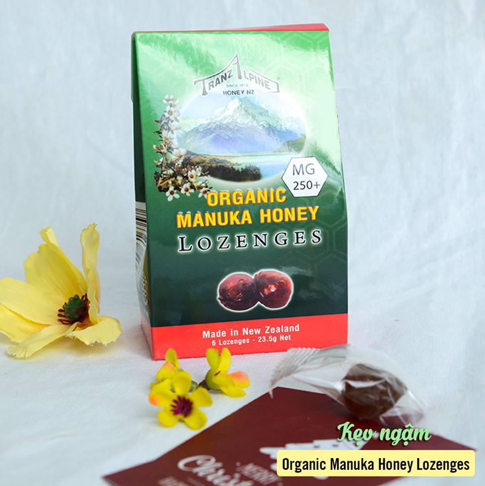 Kẹo Ngậm Trị Ho, Đau Họng Organic Manuka Honey Lozenges MG250+ (6 Viên) 1