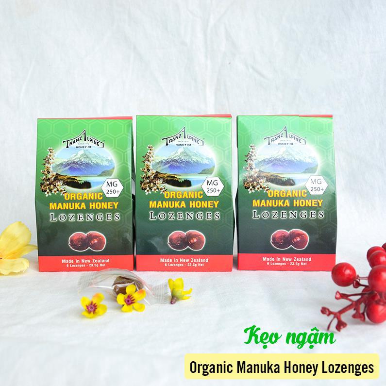 Kẹo Ngậm Trị Ho, Đau Họng Organic Manuka Honey Lozenges MG250+ (6 Viên) 2