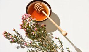 Các chỉ số của mật ong Manuka có ý nghĩa gì?