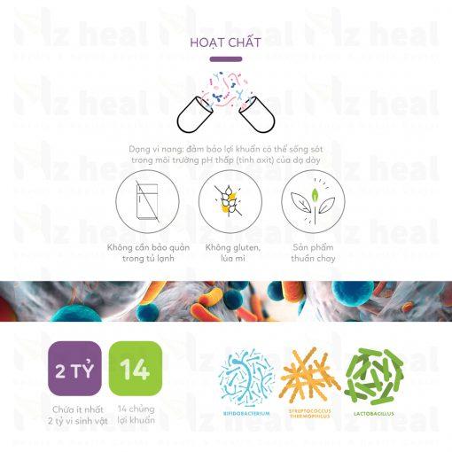 Thành phần của men vi sinh Probiotics Lifestream