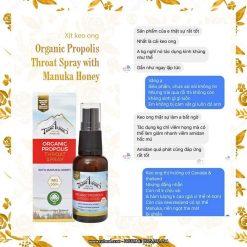 Xịt keo ong Organic Propolis Throat Spray with Manuka Honey MG550+ 5
