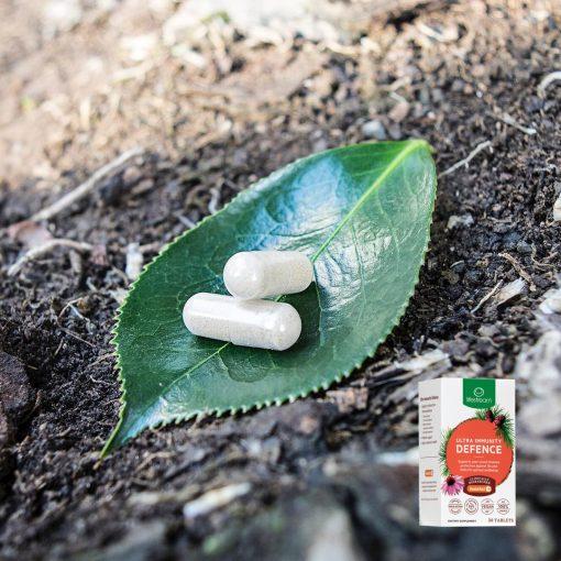 Viên uống tăng miễn dịch Lifestream Ultra Immunity Defence 30 viên 4